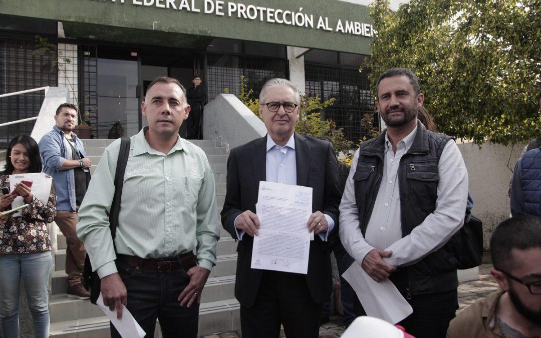 DENUNCIA JALISCO CAMBIO DE USO DE SUELO ILEGAL PARA PRODUCCIÓN DE AGUACATE