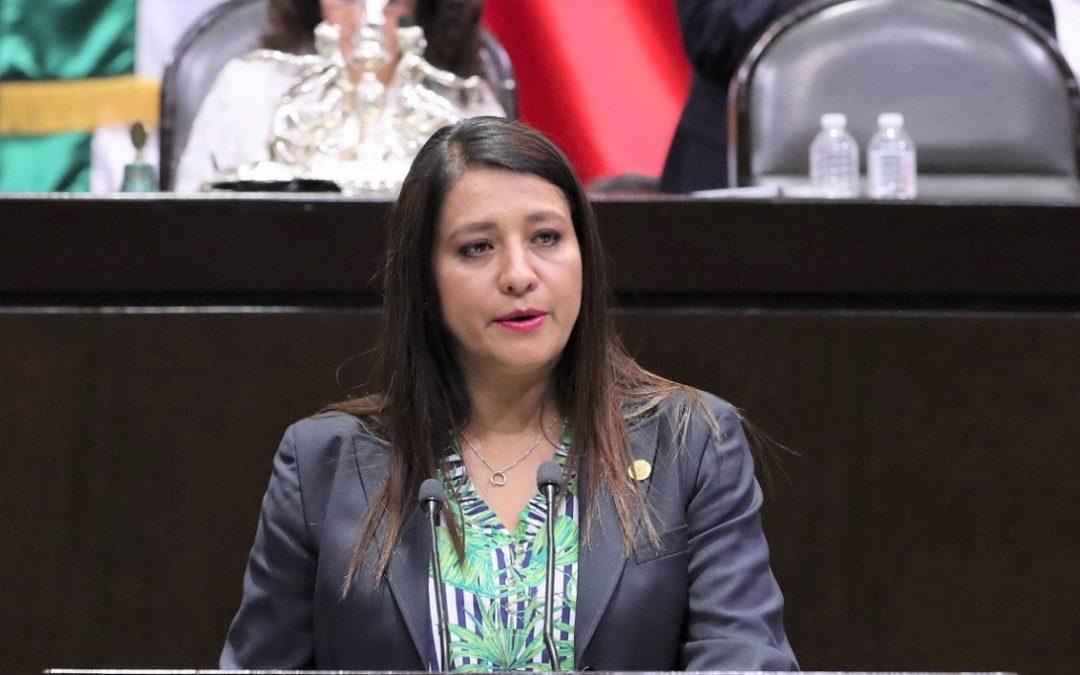 ELECCIÓN DE NUEVA TITULAR DE LA CNDH SE DIO BAJO LA SOMBRA DEL FRAUDE: PRD
