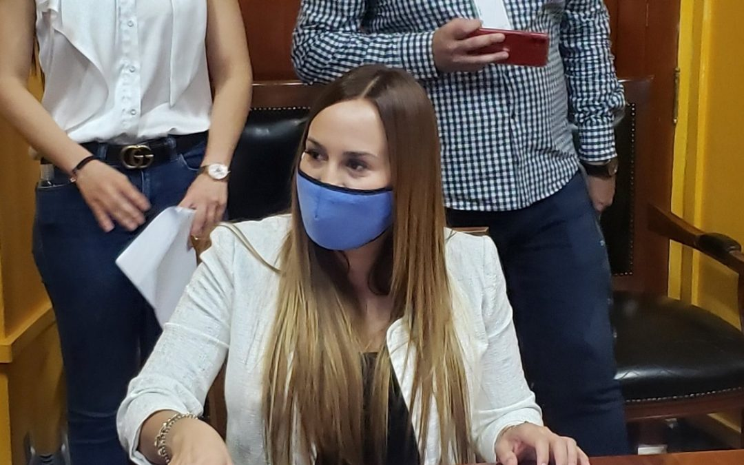 POR VOTAR DEUDA PÚBLICA BANCADA DE MORENA DESCONOCE A PATRICIA MEZA