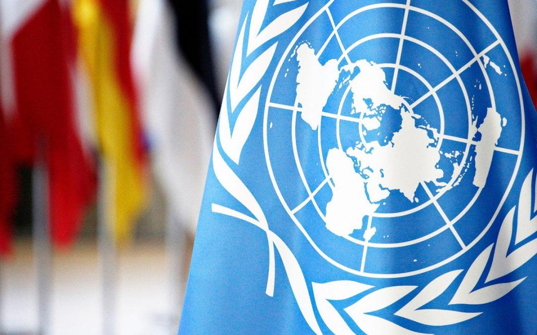 COOPERATIVAS CAMINO A MAYOR RESILIENCIA EN MEDIO DEL CORONAVIRUS: ONU